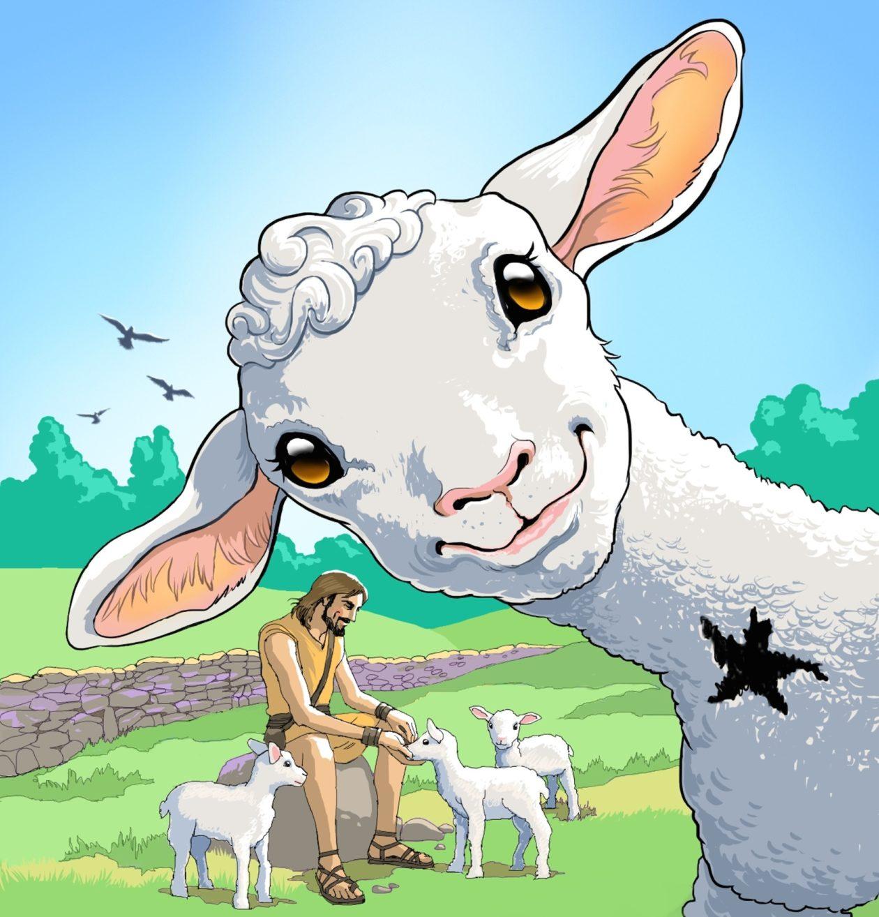 Manny The Lamb